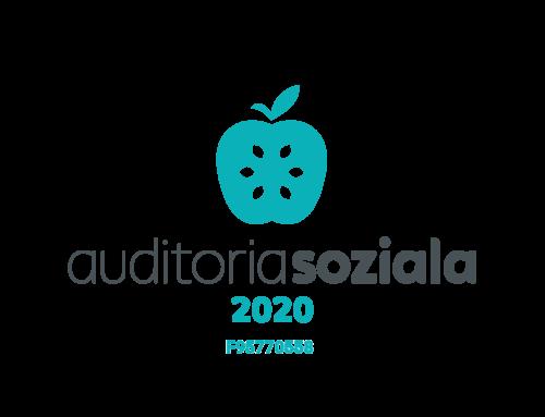 auditoria soziala 2020